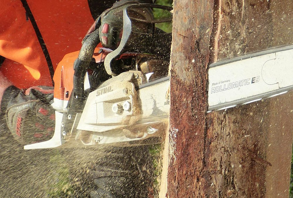 STIHL – The Essential List of Electrically oriented, Cordless Power Equipment one must have